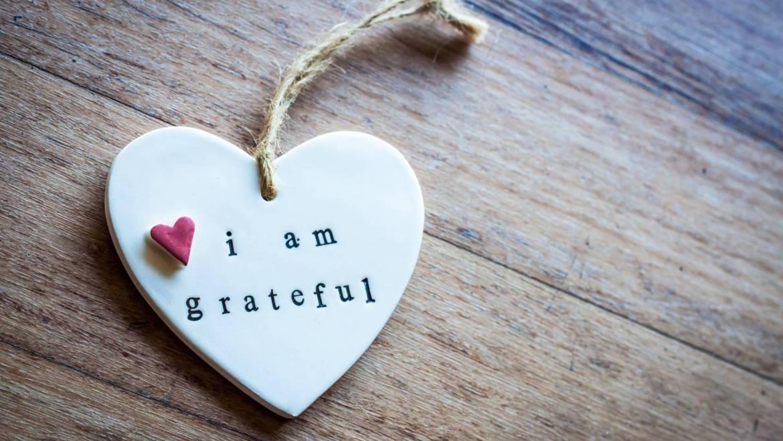 Essere grati di quello che si ha rende felici